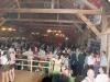Wurmbrand-Grisu-Almfest-28