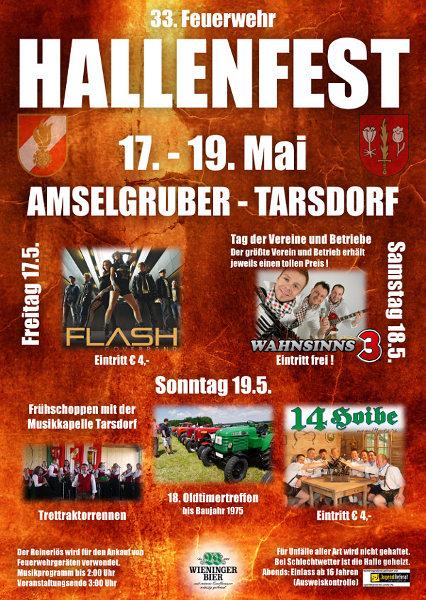 Flyer Hallenfest Tarsdorf 2013